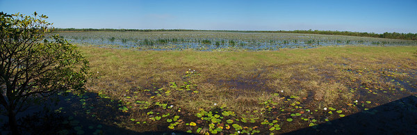 Wetland Panorama, Kakadu National Park - Northern Territory, Australia