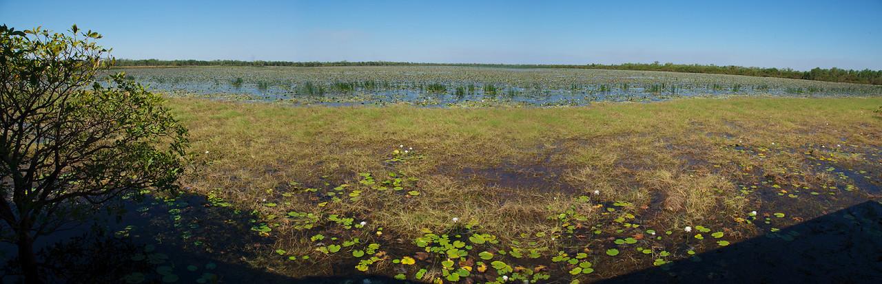 Wetland Panorama, Kakadu National Park - Northern Territory, Australia
