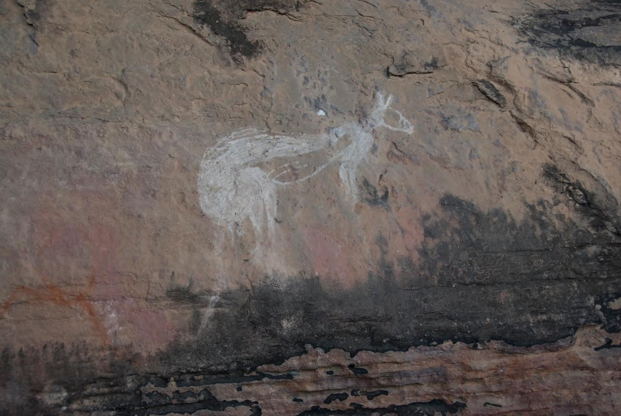Kangaroo Rock Art 1, Anbangbang, Kakadu National Park - Northern Territory, Australia