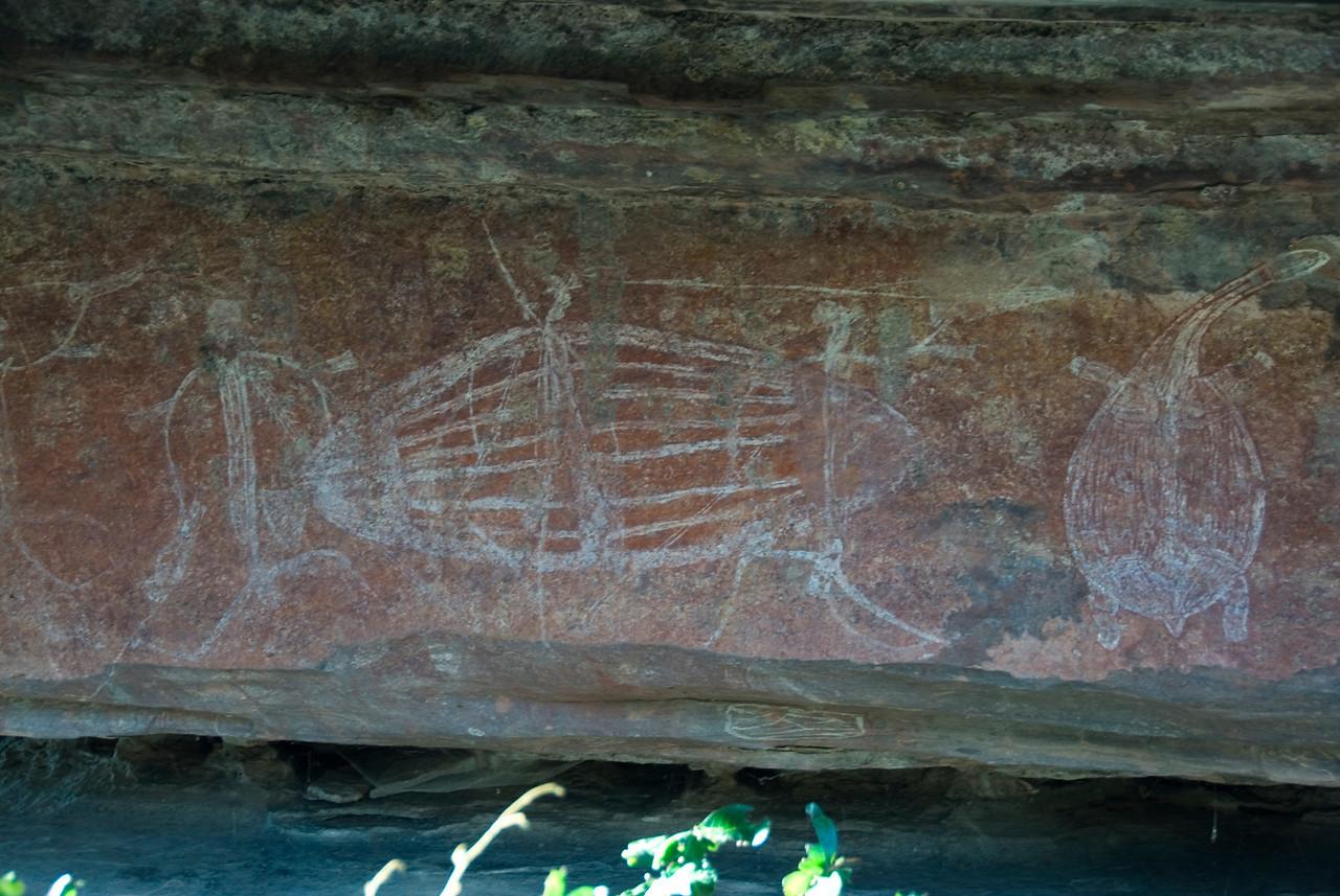 Ubirr Artwork 23, Kakadu National Park - Northern Territory, Australia