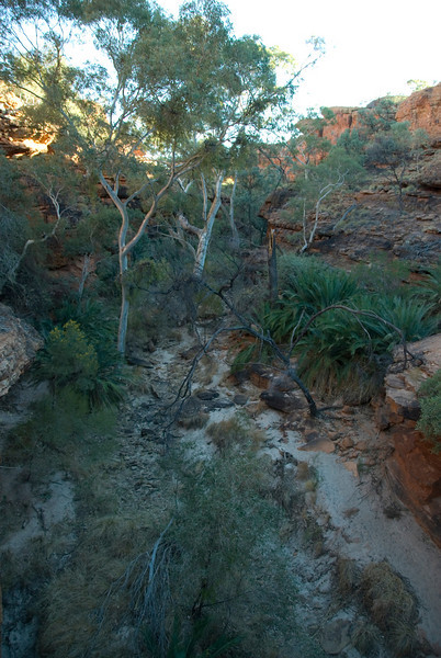 Garden of Eden, Kings Canyon 2 - Northern Territory, Australia