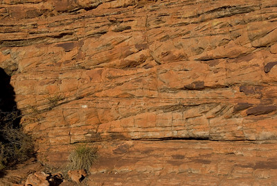 Cross Bedding Kings Canyon  - Northern Territory, Australia