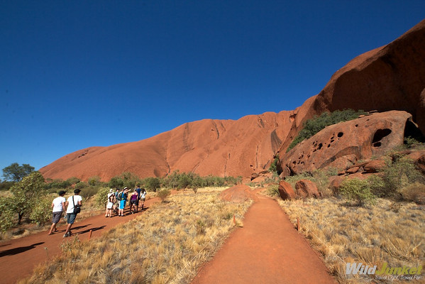 From the base of Uluru
