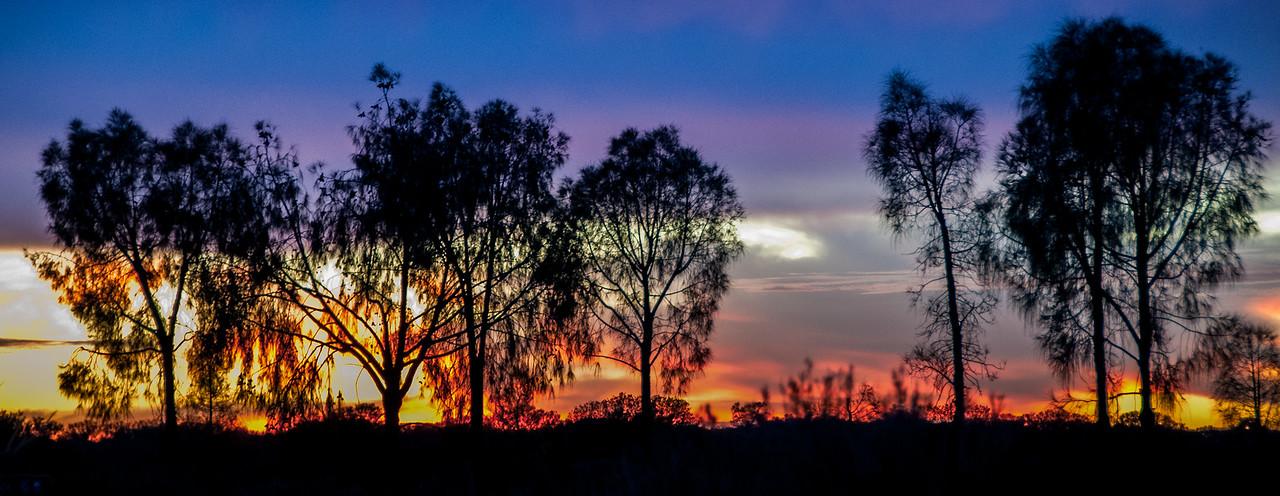 Forest fire near Uluru National Park, Australia