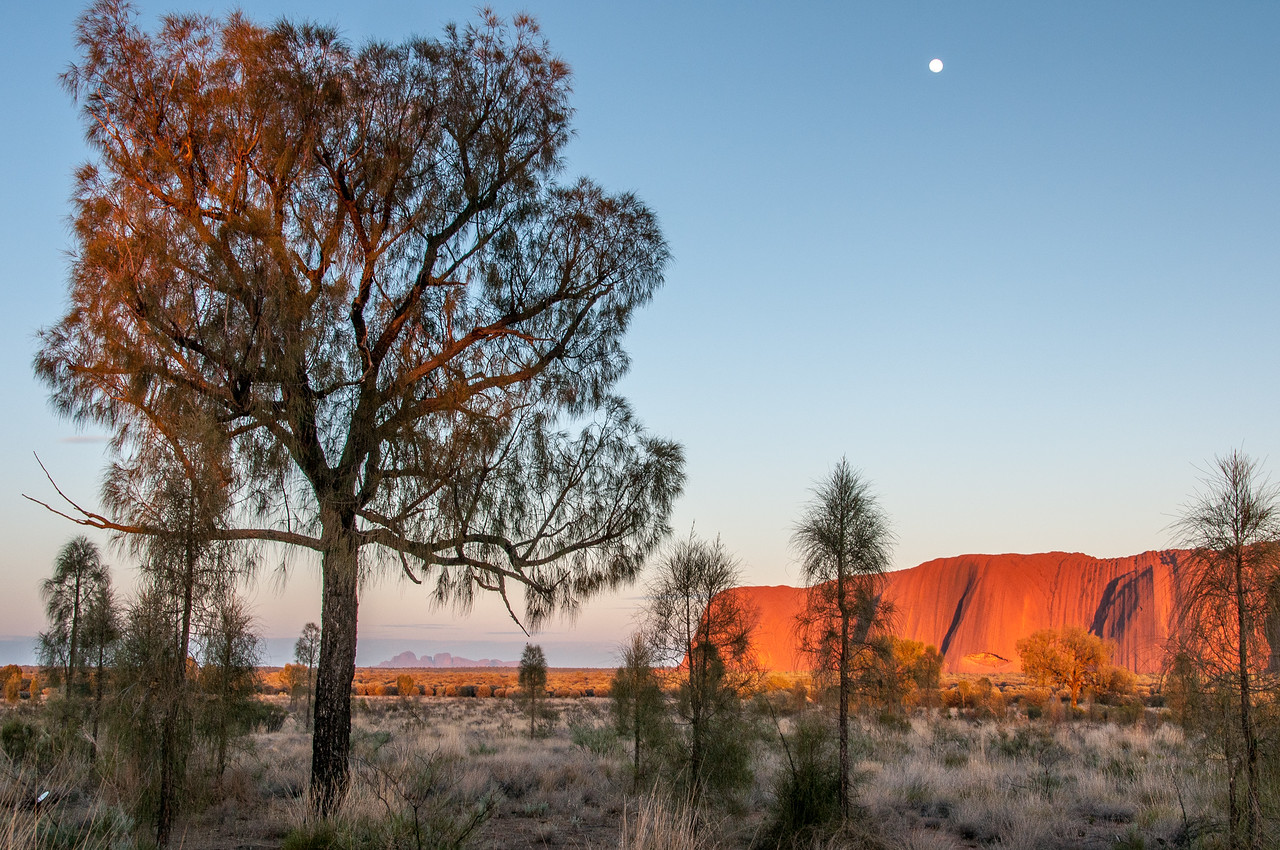 Moon over Uluru National Park in Northern Territory, Australia