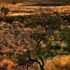 Uluru Glow
