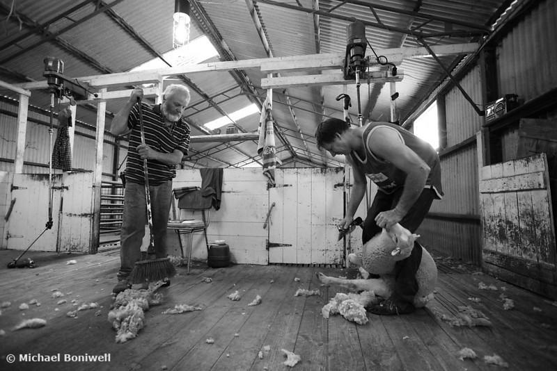Noel Mc Naulty & Richard Stephenson, Shearers, Logan, Victoria, Australia
