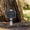 Fallen Heroes Honored in King's Park