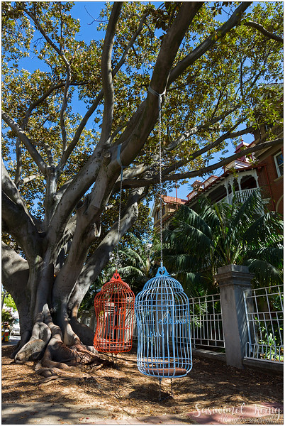 Hanging birdcages, Perth