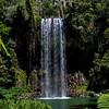 Millaa Millaa Falls, Atherton Tablelands.