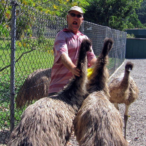 Russell fighting off you emu's at the wildlife park.