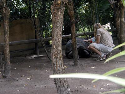 13   Australia Zoo
