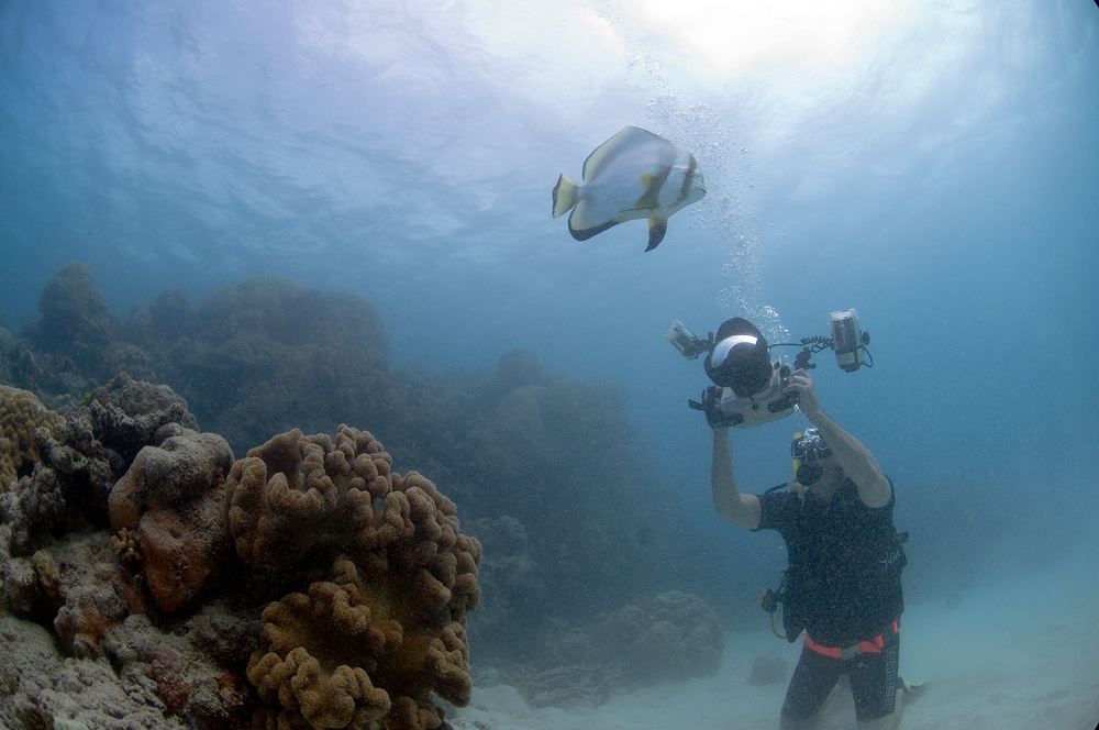 A photo of me taking underwater photos in the Great Barrier Reef