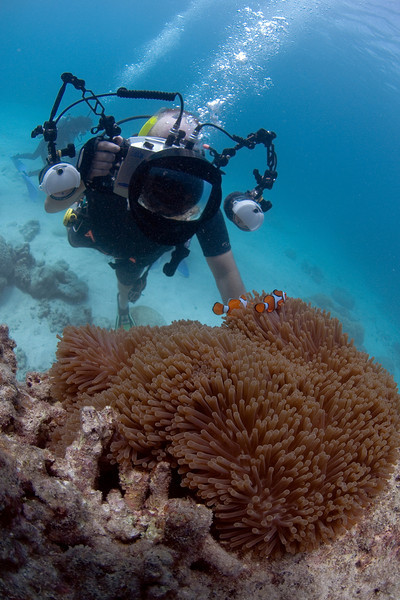 Me, Camera, and Clownfish 2, Great Barrire Reef - Cairns, Queensland, Australia