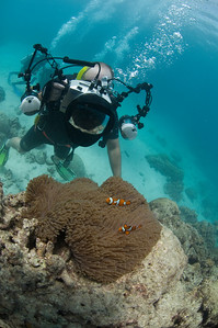 Me, Camera, and Clownfish 3, Great Barrire Reef - Cairns, Queensland, Australia