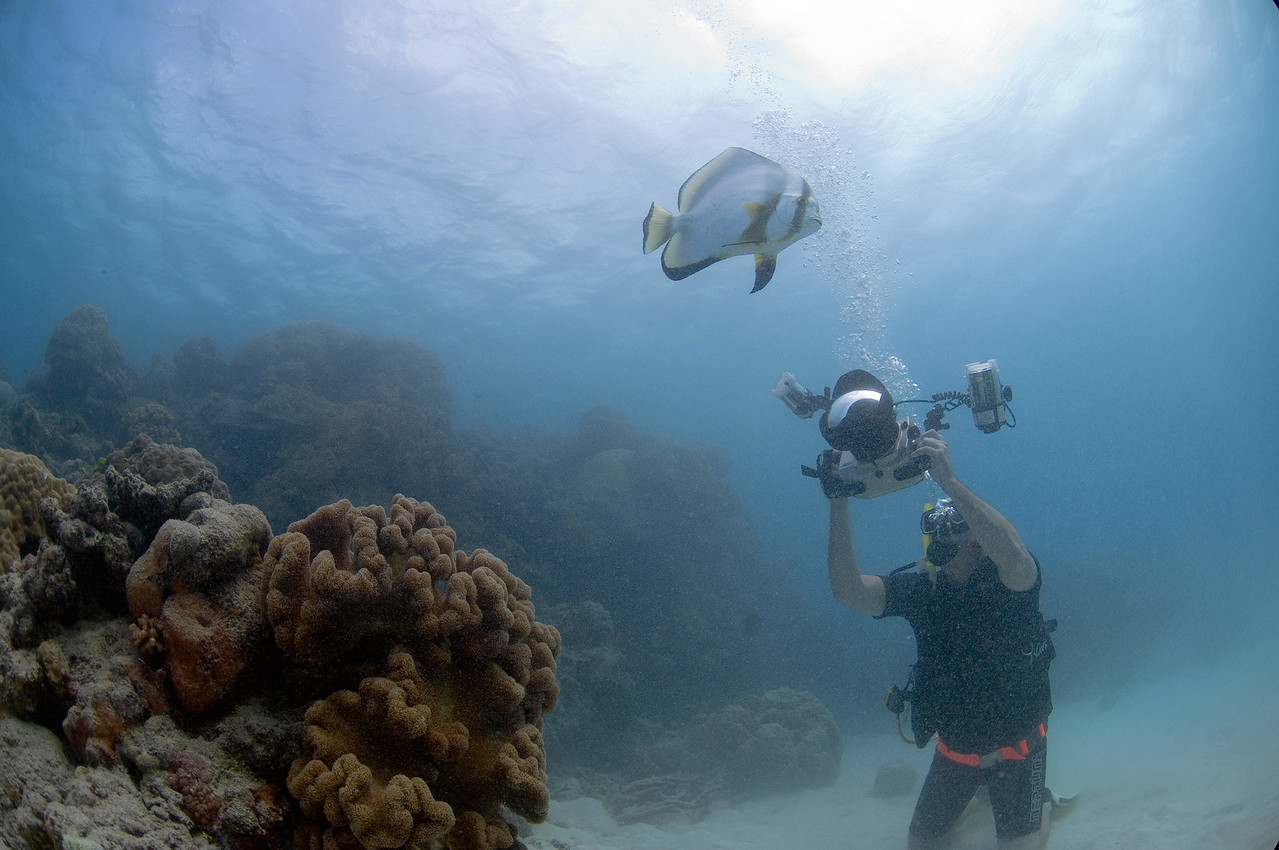 Me, Camera, and Fish, Great Barrire Reef - Cairns, Queensland, Australia