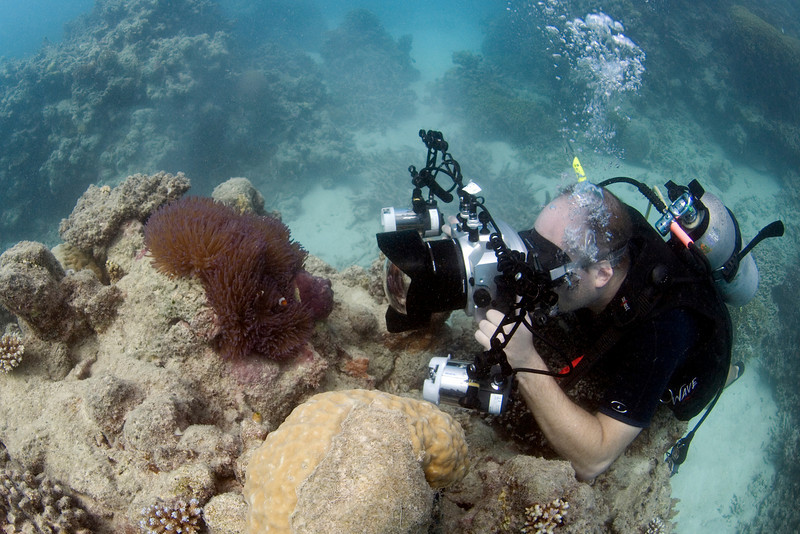 Me, Camera, and Clownfish 4, Great Barrire Reef - Cairns, Queensland, Australia