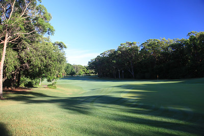 HyattCoolum_02BackGreen_4297