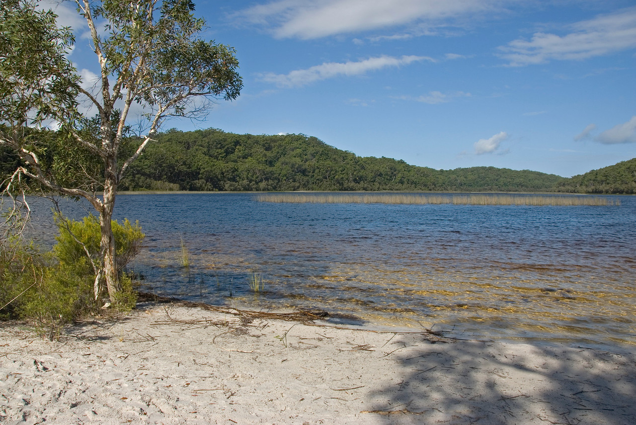 Lake 1, Fraser Island - Queensland, Australia.jpg