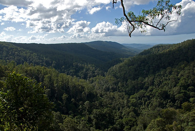 Vista 6, Springbrook National Park - Queensland, Australia