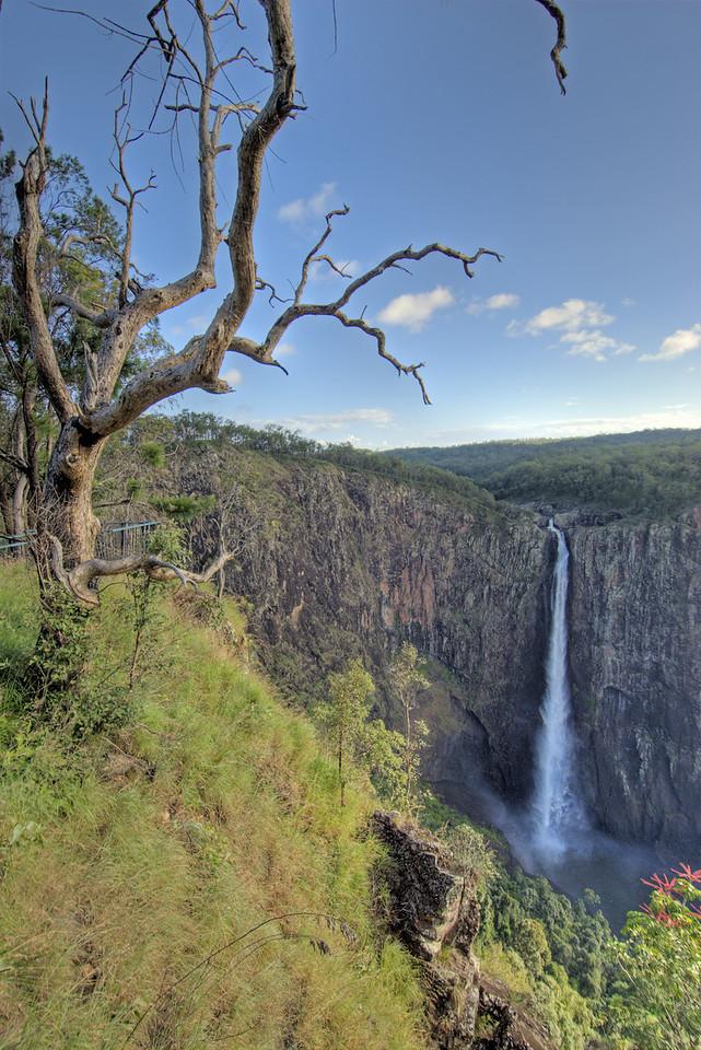 Wallaman Falls and Tree HDR,Girringun National Park - Queensland, Australia