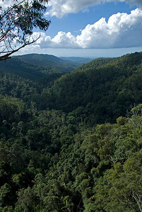 Vista 5, Springbrook National Park - Queensland, Australia