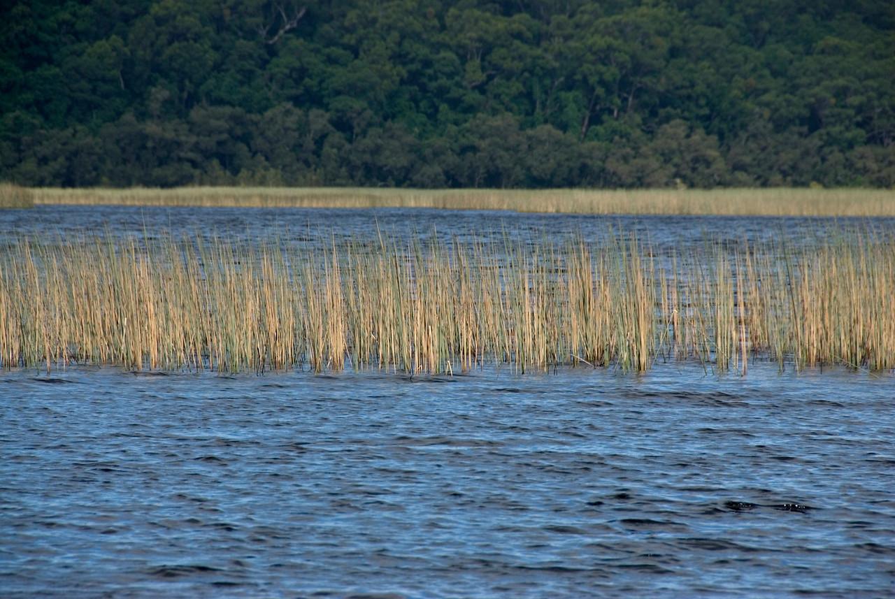Lake 2, Fraser Island - Queensland, Australia.jpg