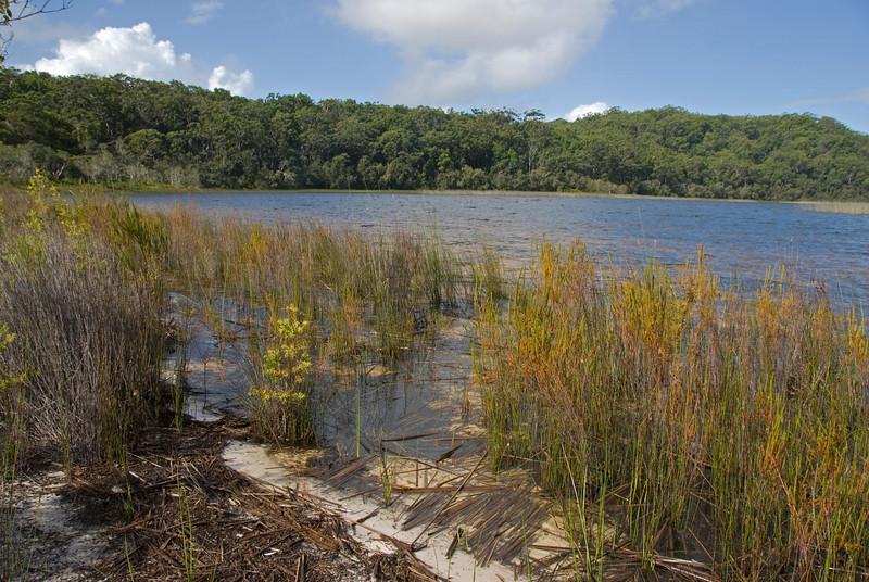 Lake 3, Fraser Island - Queensland, Australia.jpg