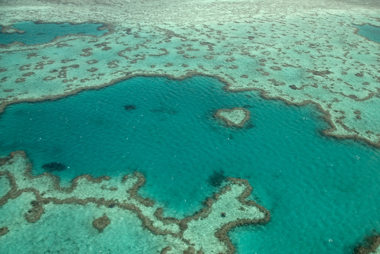 Heart Reef - Queensland, Australia