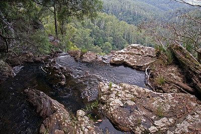 Top of Waterfall 1, Springbrook National Park - Queensland, Australia