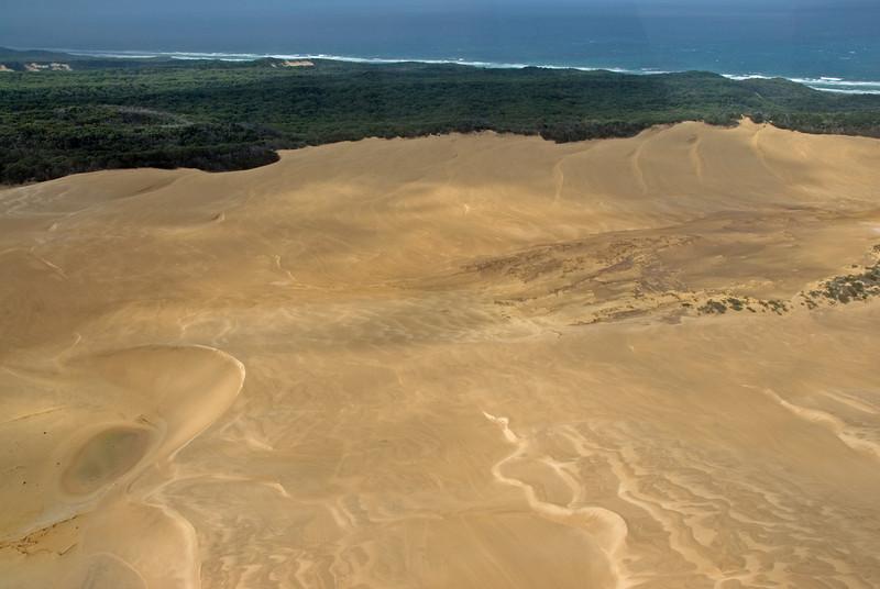 Sand Dunes 1, Fraser Island - Queensland, Australia