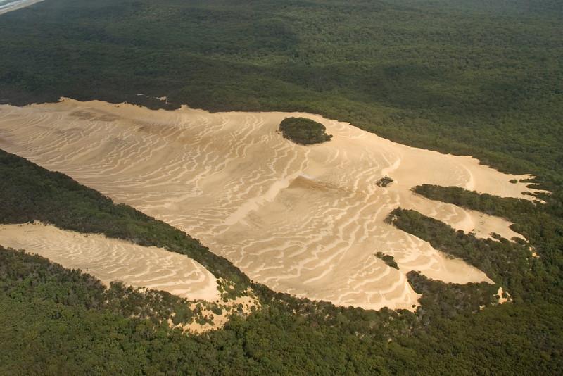 Sand Creep, Fraser Island - Queensland, Australia