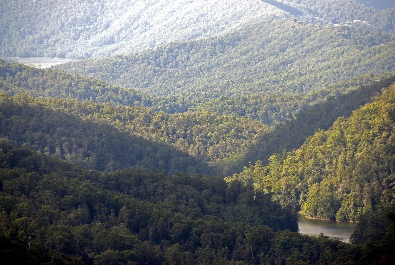 Vista 3, Springbrook National Park - Queensland, Australia