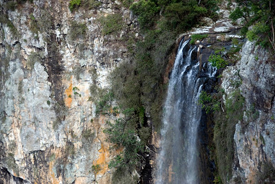 Waterfall Closeup, Springbrook National Park - Queensland, Australia