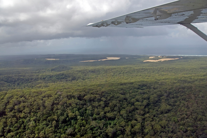 Wing of Airplane and Forest, Fraser Island - Queensland, Australia