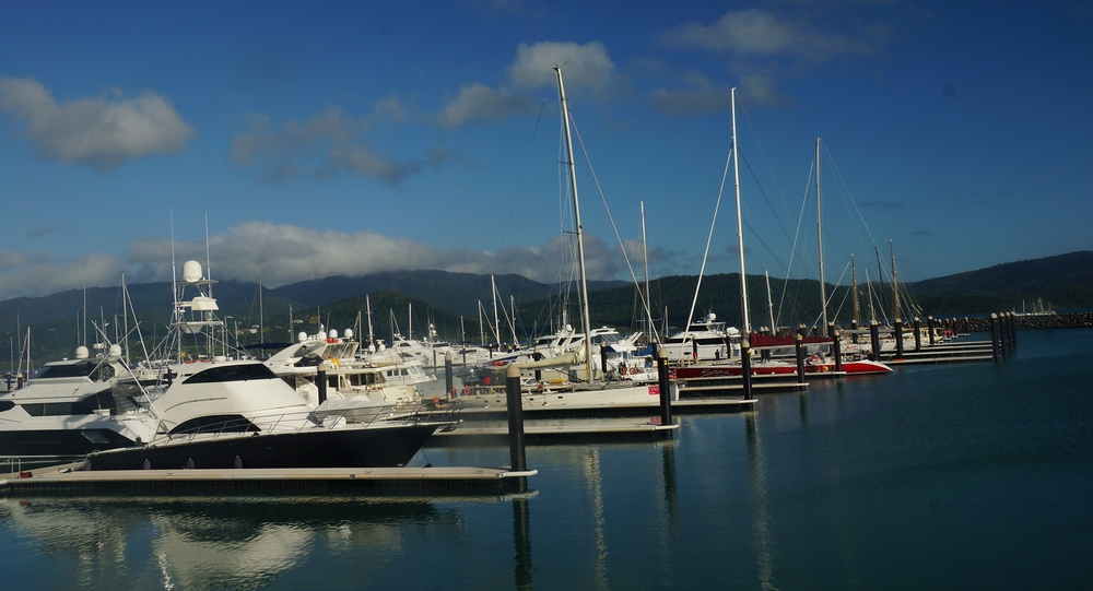 A shot of boats in the harbor at Abel Point Marine.