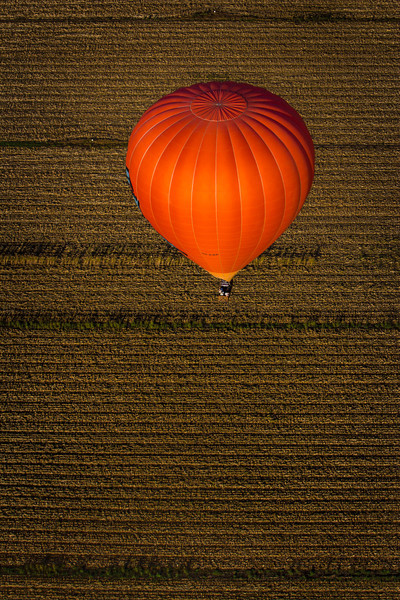Flying high over the other Balloon