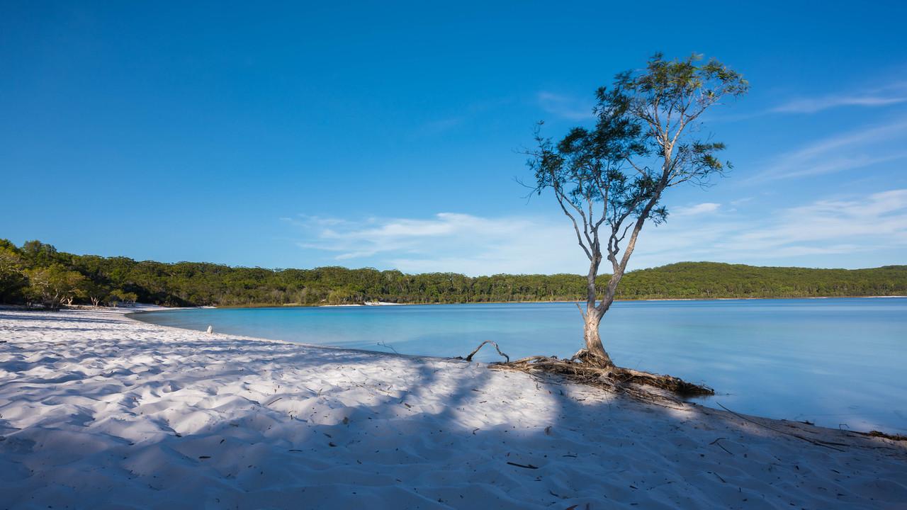 Lake McKenzie Fraser Island Tour