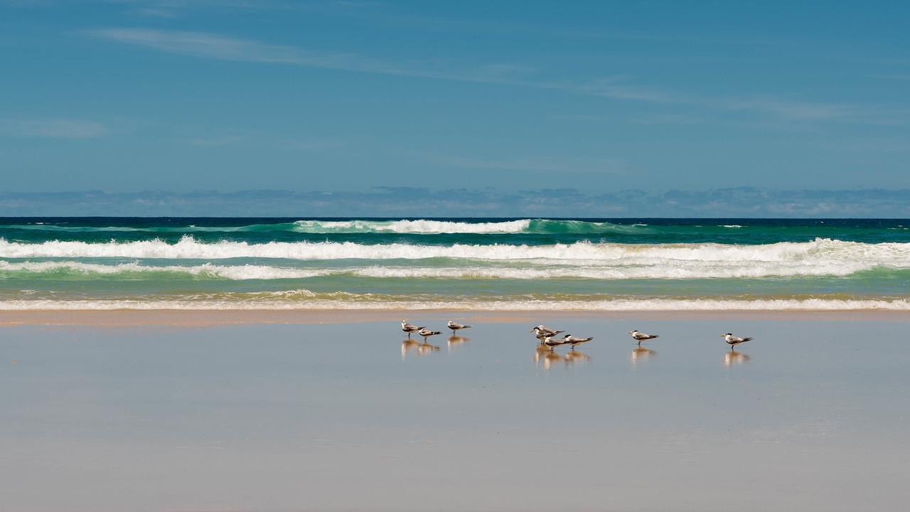 Fraser Island Tour australia