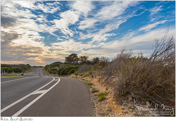 Nice and peaceful trail to Cape Dombey