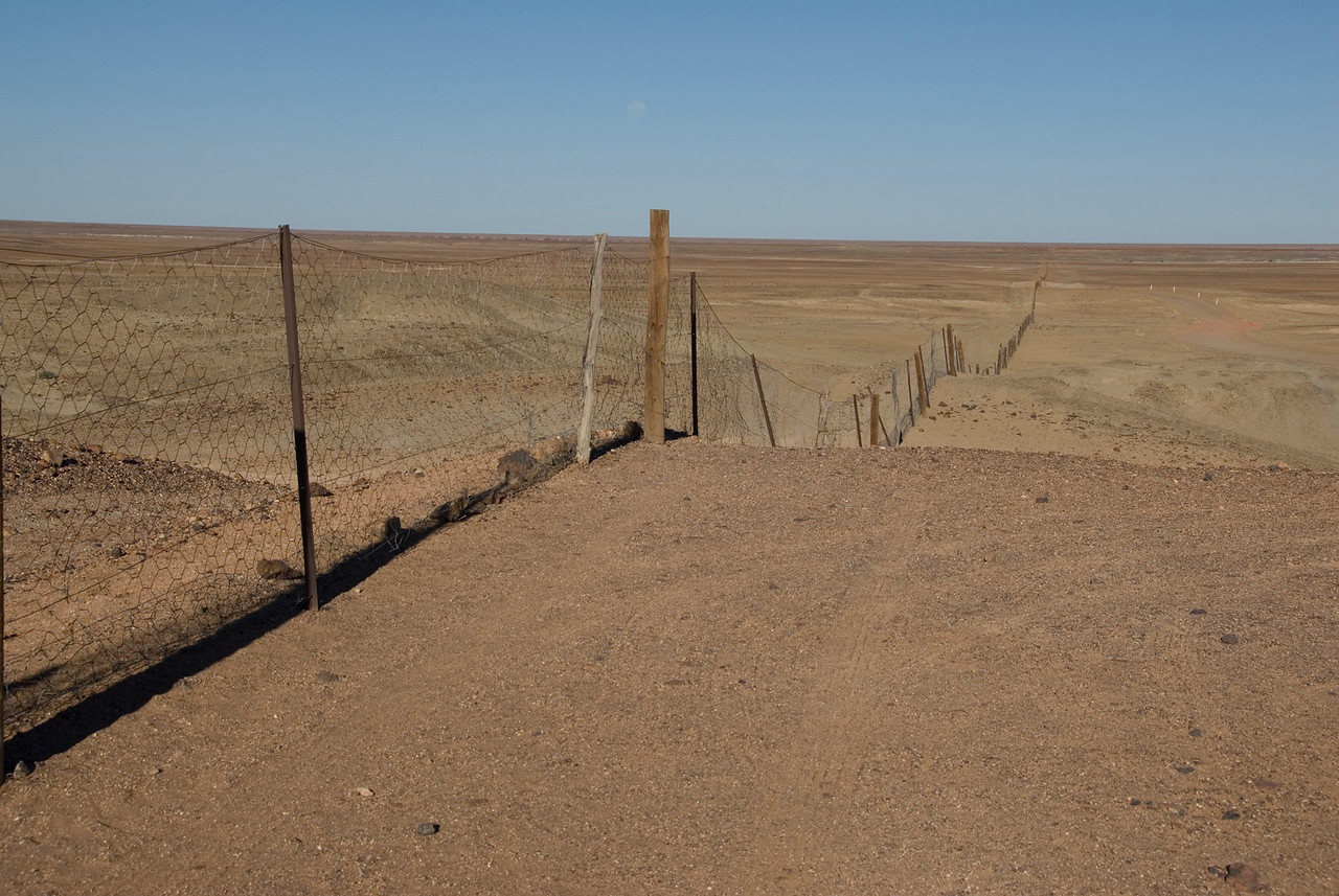 Dog Fence 2 - Coober Pedy, South Australia