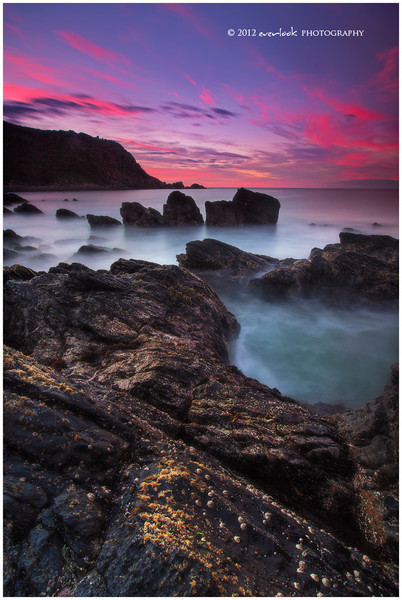 Petrel Cove
