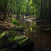 Buderim Falls State Park