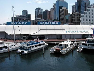 20  Sydney Aquarium