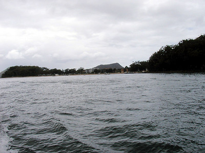 14  Port Stephens Dolphin Cruise