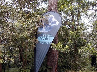 16  Taronga Zoo - Sydney