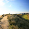Barnbougle_05TrackGreenAM_0938