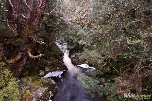 Hiking past creeks