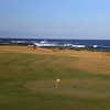 KingIsland_04BackGreen_8096