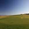 KingIsland_07BackGreen_7821